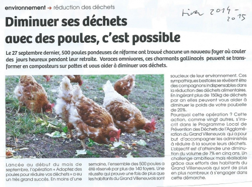 Les poules de Villeneuve - novembre 2014.jpg