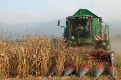 agriculture,grésivaudan,crolles